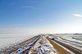 Ice and snow in winter in the Netherlands — Stock Photo