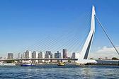 Most erazma w rotterdamie port holandia — Zdjęcie stockowe