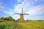 Traditional windmill in the countryside from the Netherlands — 图库照片