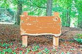 Pusty stary drewniany znak w lesie — Zdjęcie stockowe