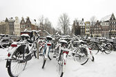 Snowy bikes in Amsterdam the Netherlands — Stock Photo