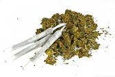 Marihuana joint with marihuana — Stock Photo