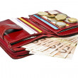 Red wallet with cards and euro money - Stock Photo