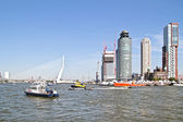 Harbor from Rotterdam in the Netherlands with the Erasmus bridge — Stock Photo