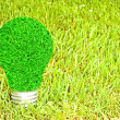 Light bulb made of green grass isolated on white background (eco — Stock Photo