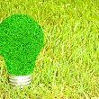 Light bulb made of green grass isolated on white background (eco — Stockfoto