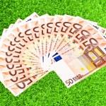 dinheiro de papel de cinquenta euros na grama verde — Foto Stock
