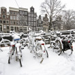 Winter in Amsterdam in the Netherlands — Foto de Stock
