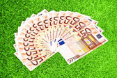 Fifty euro paper money on green grass — Stok fotoğraf