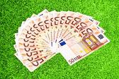 Yeşil çimenlerin üzerinde 50 euro kağıt para — Stok fotoğraf