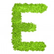 The letter E from green grass — Stock Photo #20839765