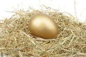 Golden egg in straw — Stock Photo