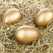 Three golden eggs in straw — Stock Photo #21378045