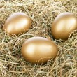Three golden eggs in straw — Stock Photo