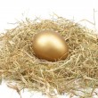 Golden egg in straw — Stock Photo