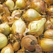 Onions in market stall — Stock Photo #26531601