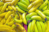 Organic bananas in a supermarket — Stock Photo