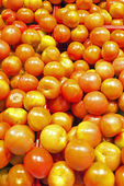 Tomatoes in the supermarket — Stock Photo