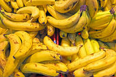 Oranic bananas in a market stall — Stock Photo