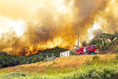 Huge forest fire threatens homes in Portugal — Stock Photo