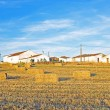 Monte Novo with hay bales in the fields in Portugal — Stock Photo
