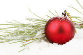Red christmas ball with fir in the snow — Stock Photo