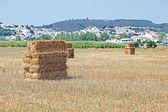Haybales in the fields near Aljezur in Portugal — Stock Photo