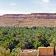 Panoramfrom oasis in Atlas mountains in Morocco — Stock Photo #35676989