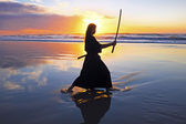 Young samurai women with Japanese sword(Katana) at sunset on the — Stock Photo