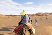 Caravana de camelos passando por dunas de areia — Fotografia Stock