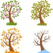 Four Seasons Tree — Stock Vector #14046758