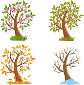 Four Seasons Tree — Stock Vector