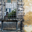 Old wall with metallic bars — Stock Photo #13322701