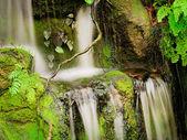 Cascading Waterfall — Stock Photo