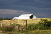 Farmhouse in a field — Stock Photo