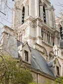 Notre Dame in Paris — Stock Photo