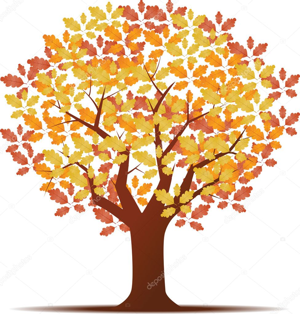 Autumn background with trees and leaves — Stock Photo #13321463