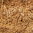 Dry grass, hay, straw textured border background vintage style w — Stock Photo #43439701