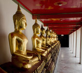 Row of buddhas statue in Thailand — Stock Photo