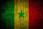 Senegalská vlajka texturu dřeva — Stock fotografie
