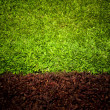 Green grass surface — Foto de Stock