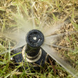 Stock Photo: Detail of a working lawn sprinkler head watering the grass