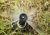 Detail of a working lawn sprinkler head watering the grass — Stock Photo