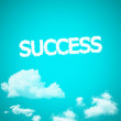 Cloud success icon — Stock Photo #31593533