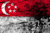 Grunge flag of singapore — Stock Photo