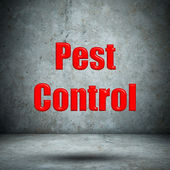Pest Control concrete wall — Photo