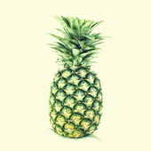 Pineapple old vintage retro style — Stock Photo
