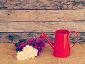 Flowers and watering can old retro vintage style — Zdjęcie stockowe