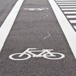 Bicycle lane — Foto Stock