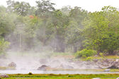 Hot spring at Chae Son national park — Stock Photo